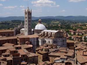 Siena large